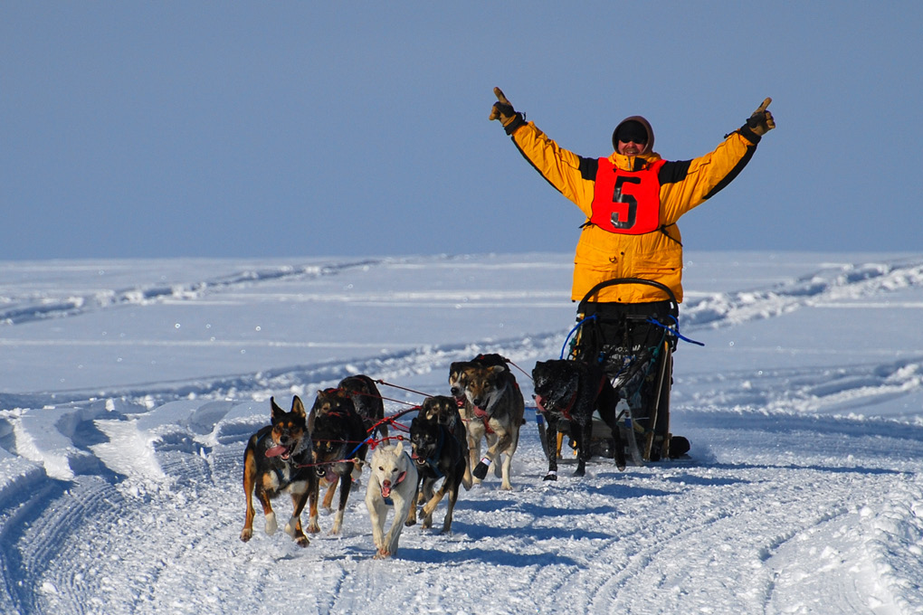 Enthusiastic Musher